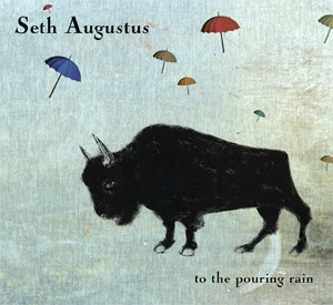 To the Pouring Rain by Seth Augustus cover image